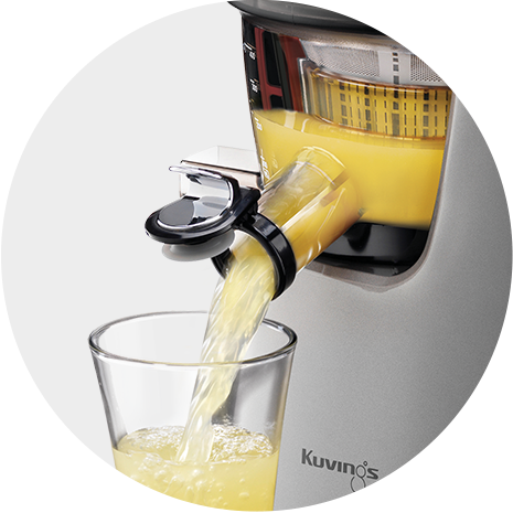 Kuvings E8000 Professional cold press juicer